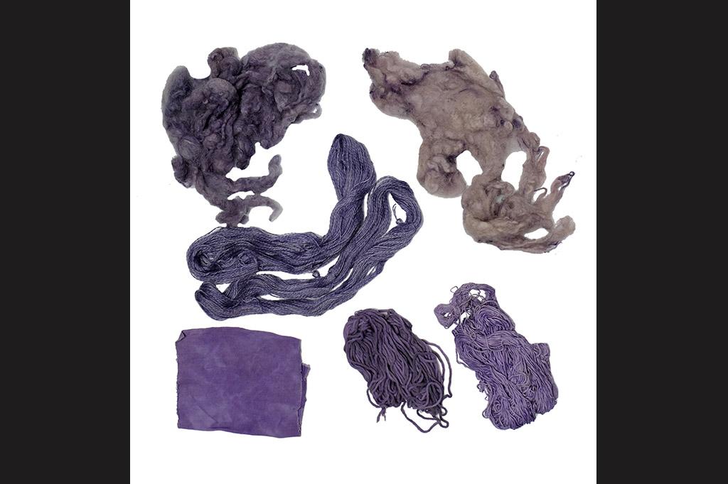 Sylvie Cambet_teinture végétale_violet