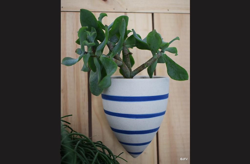 suspension plante, Jf Vilpoux